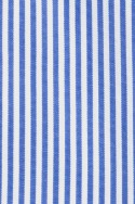 MIDDLE BLUE AND WHITE THIN STRIPES 115,00 €